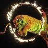Цирки в Чебаркуле